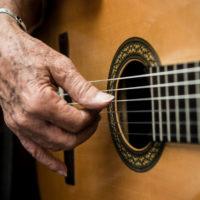 Latin guitarist