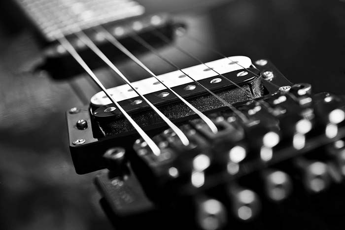 electric guitar pickup in black and white feat